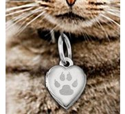 Cat s Paw Print Heart Picture Locket