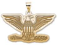 Unites States Navy Captain Pendant