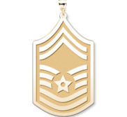 U S AirForce National Guard Senior Master Sergeant Pendant