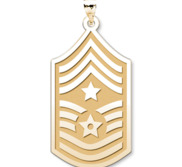 U S AirForce National Guard Command Chief Master Sergeant Pendant