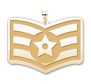 U S AirForce National Guard Senior Airman Pendant