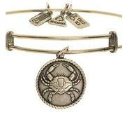Wind   Fire  Crab  Expandable Bracelet