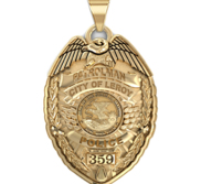 Personalized Illinois Police Badge with Your Name  Rank  Number   Department