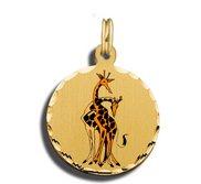 Giraffes Charms