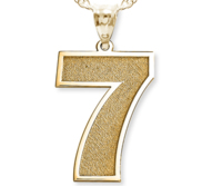 Single Number Pendant or Charm