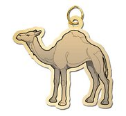 Camel Charm