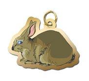 Rabbit Charm