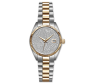Custom Swiss QuartzLine Fingerprint Watch