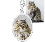 Petite Oval with Border Photo Charm For Bracelet