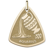 Aquarius Symbol Shield Pendant or Charm