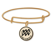 Aquarius Symbol Expandable Bracelet