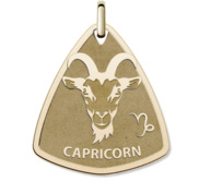 Capricorn Symbol Shield Pendant or Charm
